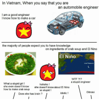 It's not easy to be an engineer :3   3569: In Vietnam, When you say that you are  an automobile engineer  I am a good engineer  I know how to make a car  the majority of people expect you to have knowledge  on ingredients of crab soup and El Nino  El Nino  Low Pressure  WTF  a stupid engineer  What a stupid girl  hohoho  she even doesn't know  she doesn't know about El Nino  how to make crab soup  so stupid!  Oitroioi  Idiotic  Does she has brain It's not easy to be an engineer :3   3569