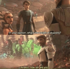 Water, Cold, and Stupidity: In your opinion, whats the height of stupidity  Anakin, how tall are you? Apply cold water to the burned area