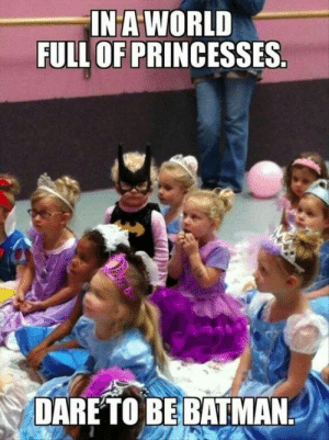 Be The Batman: INA WORLD  FULL OF PRINCESSES  DARETO BE BATMAN Be The Batman