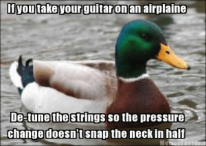 Advice, Dad, and Pressure: inaronan airplaine  the  De-tune strings so the pressure  change doesn t snap the neck in half animar-smol-of-elephants:  mojave-wasteland-official:  coasttocoastlikebutteredtoast:  cameoappearance:  travislatrine:  thedailymeme:  I spent my two-hour layover mourning the two halves of my Ovation. Help me save others from the same fate!  SIGNAL BOOST. I honestly didn't know this.  #my dad - a professional musician - has many horror stories from people who didn't know this and had their guitars totally wrecked on planes #advice duck  The More You Know.  I did not know this   This goes for violins and any other stringed instrument as well