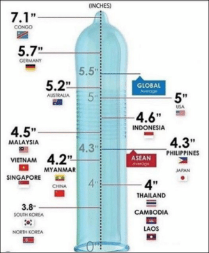 "48 Of The Funniest Work Memes and Pics Ever.: (INCHES)  7.1'""  CONGO  5.7""  GERMANY  5.5  5.2  5  GLOBAL  Averoge  5""  AUSTRALIA  USA  -4.6""  INDONESIA  4.5""  4.3""  PHILIPPINES  MALAYSIA  4.3  4.2  MYANMAR  ASEAN  Averoge  VIETNAM  JAPAN  SINGAPORE  4  4P""  CHINA  THAILAND  3.8  CAMBODIA  SOUTH KOREA  LAOS  NORTH KOREA 48 Of The Funniest Work Memes and Pics Ever."