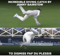 England, Memes, and 🤖: INCREDIBLE DIVING CATCH BY  JONNY BAIRSTOW  ENGLAND  Investec Privat  6Tave  ing  Investec Asset Mana  TO DISMISS FAF DU PLESSIS Jonny Bairstow takes a blinder to dismiss Faf du Plessis.