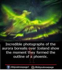 Memes, Iceland, and Phoenix: Incredible photographs of the  aurora borealis over Iceland show  the moment they formed the  outline of a phoenix.  /didyouknowpagel @didyouknowpage