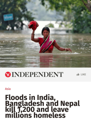 "woke-up-on-derse:  f-f-f-fight:  ithelpstodream:  ""In Nepal, 150 people have been killed and 90,000 homes have been destroyed in what the UN has called the worst flooding incident in the country in a decade.  According to the Red Cross, at least 7.1 million people have been affected in Bangladesh - more than the population of Scotland - and around 1.4 million people have been affected in Nepal.  International aid agencies said thousands of villages have been cut off by flooding with people being deprived of food and clean water for days.""  http://www.independent.co.uk/news/world/asia/india-floods-bangladesh-nepal-deaths-millions-homeless-latest-news-updates-a7919006.html?cmpid=facebook-post  donate to: islamic relief fundsave the children*save the children - india**oxfam - south asia flood*oxfam - india** * these go into an emergency fund** for residents of india. otherwise you have to input passport info edit: updated links please add any other ways to help  that article is from 5 hours ago.  to date this post, it is 8/30. your support matters /now/ : INDEPENDENT LIKE  Asia  Floods in India,  Bangladesh and Nepal  kill T,200 and leave  millions homeless woke-up-on-derse:  f-f-f-fight:  ithelpstodream:  ""In Nepal, 150 people have been killed and 90,000 homes have been destroyed in what the UN has called the worst flooding incident in the country in a decade.  According to the Red Cross, at least 7.1 million people have been affected in Bangladesh - more than the population of Scotland - and around 1.4 million people have been affected in Nepal.  International aid agencies said thousands of villages have been cut off by flooding with people being deprived of food and clean water for days.""  http://www.independent.co.uk/news/world/asia/india-floods-bangladesh-nepal-deaths-millions-homeless-latest-news-updates-a7919006.html?cmpid=facebook-post  donate to: islamic relief fundsave the children*save the children - india**oxfam - south asia flood*oxfam - india** * these go into an emergency fund** for residents of india. otherwise you have to input passport info edit: updated links please add any other ways to help  that article is from 5 hours ago.  to date this post, it is 8/30. your support matters /now/"