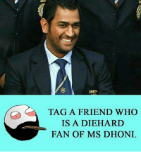 Twitter: BLB247 Snapchat : BELIKEBRO.COM belikebro sarcasm meme Follow @be.like.bro: INDIA  TAG A FRIEND WHO  IS A DIEHARD  FAN OF MS DHONI Twitter: BLB247 Snapchat : BELIKEBRO.COM belikebro sarcasm meme Follow @be.like.bro