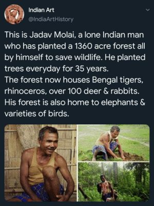 You can see his happiness: Indian Art  @IndiaArtHistory  This is Jadav Molai, a lone Indian man  who has planted a 1360 acre forest all  by himself to save wildlife. He planted  trees everyday for 35 years.  The forest now houses Bengal tigers,  rhinoceros, over 100 deer & rabbits.  His forest is also home to elephants &  varieties of birds. You can see his happiness
