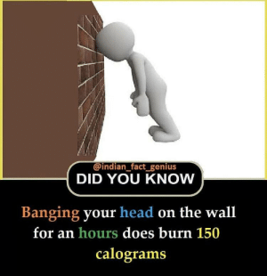 Genius: @indian fact genius  DID YOU KNOW  Banging your head on the wall  for an hours does burn 150  calograms