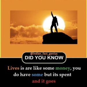 Money, Genius, and Indian: @indian fact genius  DID YOU KNOW  Lives is are like some money, you  do have some but its spent  and it goes Man door hand hook car door