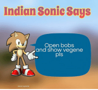 Anime, Black Lives Matter, and Funny: Indian Sonic Says  Open bobs  and show vegene  pls  kancer supreme 💿c, rape u next week ★ Follow my personal and shitpost @peckphillip @spingus_fleeb _______________________________ - - - - meme furry dankmeme overwatch memes cringe vaporwave anime gay dankmemes lol trump weaboo filthyfrank bepis benis boi blacklivesmatter lol edgy wtf filthyfrank lmao haha funny 2017