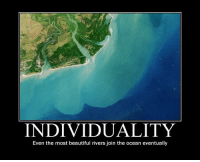 Beautiful, Ocean, and Eventually: INDIVIDUALITY  Even the most beautiful rivers join the ocean eventually <p>Individuality</p>