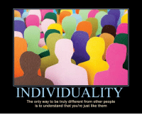 Them, Like, and Youre: INDIVIDUALITY  The only way to be truly different from other people  is to understand that you're just like them Individuality