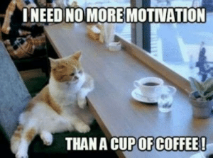 Memes, Coffee, and Images: INEED NO MORE MOTIVATION  THAN A CUP OF COFFEE! Collection : 60 Wednesday Coffee Memes, Images & Pics to Get Through ...