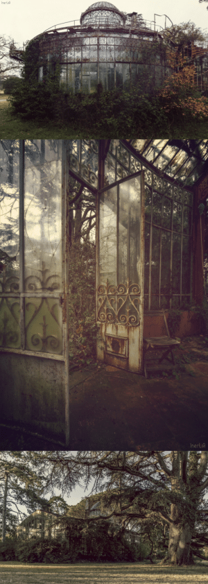 steampunktendencies: Abandoned Greenhouse Photos Nicolas Mas : Inertia   InertiA   InertiA steampunktendencies: Abandoned Greenhouse Photos Nicolas Mas