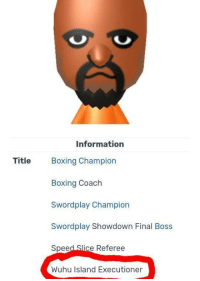 Boxing, Final Boss, and Sports: Information  Title Boxing Champion  Boxing Coach  Swordplay Showdown Final Boss  Speed Slice Referee  Wuhu Island Executioner http://wiisports.wikia.com/wiki/Matt_(Wii_Sports) Its real
