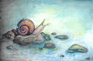 ink-the-artist:  ink-the-artist:  ink-the-artist:  A girl I met in school is giving me a whole bunch of snails from a project she was doing and asked if I could make her one of my snail drawings and of COURSE I said yes she's giving me like 15 snails  I GOT THE SNAILS  Update:I'm going to be a mother: ink-the-artist:  ink-the-artist:  ink-the-artist:  A girl I met in school is giving me a whole bunch of snails from a project she was doing and asked if I could make her one of my snail drawings and of COURSE I said yes she's giving me like 15 snails  I GOT THE SNAILS  Update:I'm going to be a mother