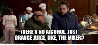 no alcohol: inng flip.  THERE'S NO ALCOHOL. JUST  ORANGEJUICE, LIKE, THEMIXER?
