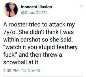 "Children, Memes, and Tumblr: Innocent Illusion  @DianaG2772  A rooster tried to attack my  7y/o. She didn't think I was  within earshot so she said,  ""watch it you stupid feathery  fuck,"" and then threw a  snowball at it.  4:02 PM 15 Nov 18 30-minute-memes: Children"