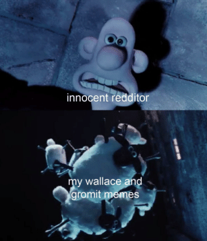 Memes, Dank Memes, and Storm: innocent redditor  my wallace and  gromit memes man the defences, a storm is coming