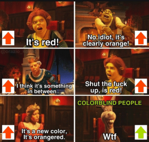Nobody cares about them: INo idiot, it's  clearly orange!  It's red!  @orazio_kovac  Shut the fuck  up, is red!  I think it's something  in between..,  COLORBLIND PEOPLE  It's a new color,  It's orangered  Wtf Nobody cares about them