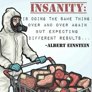 Insanity Is Doing the Same Thing Over and Over Again and Expecting Different Results: Insanity Is Doing the Same Thing Over and Over Again and Expecting Different Results