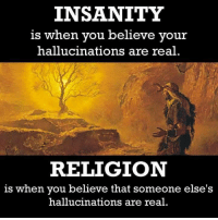 Memes, Http, and Believable: INSANITY  is when you believe your  hallucinations are real  RELIGION  is when you believe that someone else's  hallucinations are real. Check out our secular apparel shop! http://wflatheism.spreadshirt.com/