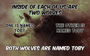 Dank, Memes, and Target: INSIDE 0F EACH OF US ARE  TWO  WOLVES  THE OTHER IS  NAMED TOBY  ONE IS NAMED  BOTH WOLVES ARE NAMED TOBY meirl by meat_safe_murderer MORE MEMES