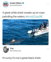 "Memes, Police, and Shark: INSIDE Inside Edition  EDITION@insideEdition  A great white shark sneaks up on cops  patrolling the waters. ietv.co/2JuyOiE  POLİCE  Trey  @treydayway  It's lucky it's not a great black shark <p>Fucked but hehe via /r/memes <a href=""https://ift.tt/2uOfeOQ"">https://ift.tt/2uOfeOQ</a></p>"