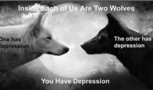 Depression, Wolves, and MeIRL: Insiee Eagh of Us Are Two Wolves  The other has  depression  One has  depression  You Have Depression meirl
