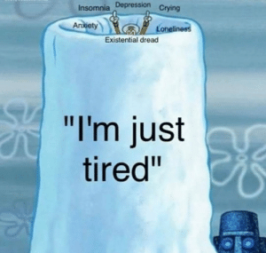 "Meirl: Insomnia Depression  Crying  An  xiet  Loneline  Existential dread  ""I'm just  tired"" Meirl"