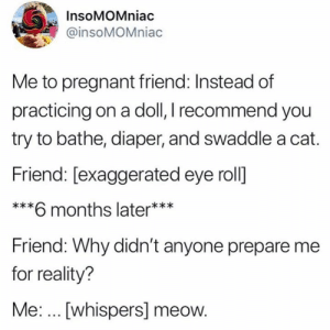 Dank, Pregnant, and Twitter: InsoMOMniac  @insoMOMniac  Me to pregnant friend: Instead of  practicing on a doll, I recommend you  try to bathe, diaper, and swaddle a cat.  Friend: [exaggerated eye roll]  ***6 months later***  Friend: Why didn't anyone prepare me  for reality?  Me: .. [whispers] meow. 😼😹 (via Twitter.com/insoMOMniac)