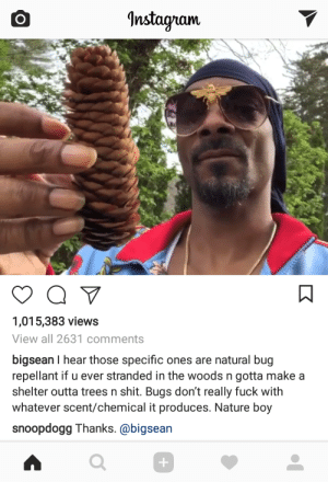 Big Sean, Instagram, and Shit: Instagram  1,015,383 views  View all 2631 comments  bigsean I hear those specific ones are natural bug  repellant if u ever stranded in the woods n gotta makea  shelter outta trees n shit. Bugs don't really fuck with  whatever scent/chemical it produces. Nature boy  snoopdogg Thanks. @bigsean  0 Big Sean out here with the survival tips