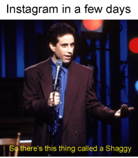 Instagram, Shaggy, and Thing: Instagram in a few days  So there's this thing called a Shaggy Whats a shaggy?