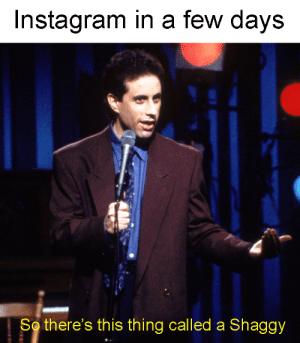 Dank, Instagram, and Memes: Instagram in a few days  So there's this thing called a Shaggy Whats a shaggy? by Johnbshava MORE MEMES