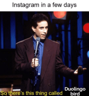 Instagram, Thing, and This: Instagram in a few days  so there's this thing called oubird  Duolingo Ever heard of it?