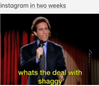 Instagram, Shaggy, and Big: instagram in two weeks  whats the deal with  shaggy instagram big gae