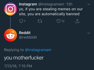 memehumor:  the meme cycle: Instagram @Instagramam 12h  Oyo, if you are stealing memes on our  site, you are automatically banned  Reddit  @reddddit  Replying to @Instagramam  you motherfucker  7/13/18, 7:15 PM memehumor:  the meme cycle