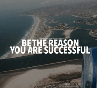 Instagram, Memes, and Reason: Instagram | millionaire.dream  BE THE REASON  YOU ARE SUCCESSFUL Your success is on you. Mention your mentor in the comments section.