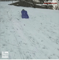 Instagram, Memes, and News: .Instagram/my aussie ga  FOX  NEWS  channe Secret the Australian Shepherd isn't letting the snow dampen her spirits. Watch as she goes sledding downhill all on her own!