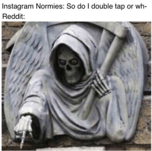 We must show them the way: Instagram Normies: So do I double tap or wh-  Reddit: We must show them the way
