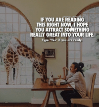 """Memes, 🤖, and Realying: INSTAGRAM. NWORDS2SUCCESS  IF YOU ARE READING  THIS RIGHT NOW YOU ATTRACT SOMETHING  REALY GREAT INTO YOUR LIFE.  Type """"Yes"""" if you are ready. Type """"Yes"""" if you are ready👌 words2success . 📷 @jarradseng"""