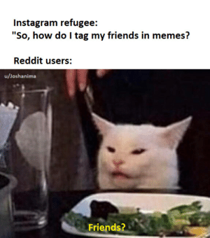 "Hahaha….. by Joshanima MORE MEMES: Instagram refugee:  ""So, how do I tag my friends in memes?  Reddit users:  u/Joshanima  Friends? Hahaha….. by Joshanima MORE MEMES"