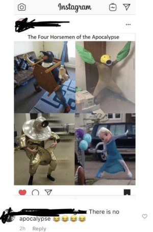 I don't understand why a person like this would even follow a meme page.: Instagram  The Four Horsemen of the Apocalypse  60g  There is no  apocalypse  2h  Reply I don't understand why a person like this would even follow a meme page.