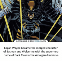 Batman, Facts, and Instagram: INSTAGRAM TRUE  COMIC  FACTS  Logan Wayne became the merged character  of Batman and Wolverine with the superhero  name of Dark Claw in the Amalgam Universe. Dark Claw! ⠀_______________________________________________________ superman joker redhood martianmanhunter dc batman aquaman greenlantern ironman like spiderman deadpool deathstroke rebirth dcrebirth like4like facts comics justiceleague bvs suicidesquad benaffleck starwars darthvader marvel flash doomsday bluelanterns darkclae