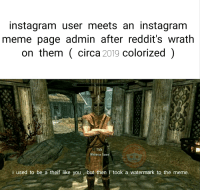Instagram, Meme, and Dank Memes: instagram user meets an instagram  meme page admin after reddit's wrath  on them circa 2019 colorized)  Whiterun Guard  i used to be a theif like you, but then i took a watermark to the meme.