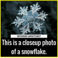 Wow ❤ Tag your friends snowflake: INSTAGRAMI @IFACTS DAILY  This is a closeup photo  of a snowflake Wow ❤ Tag your friends snowflake
