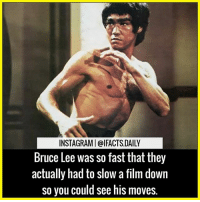 Friends, Memes, and Bruce Lee: INSTAGRAMIolFACTSDAILY  Bruce Lee was so fast that they  actually had to slow a film down  so you could see his moves. Tag your friends Follow us (@ifacts.daily) for more