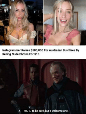 Australia needs our help: Instagrammer Raises $500,000 For Australian Bushfires By  Selling Nude Photos For $10  A THOT, to be sure, but a welcome one. Australia needs our help