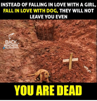 Fall: INSTEAD OF FALLING IN LOVE WITH A GIRL,  FALL IN LOVE WITH DOG, THEY WILL NOT  LEAVE YOU EVEN  BACK  BEN  YOU ARE DEAD