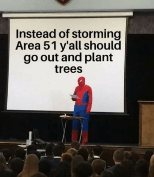how about both?: Instead of storming  Area 51 y'all should  go out and plant  trees how about both?