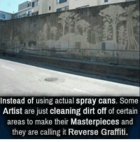 Graffiti, Memes, and Artist: Instead of using actual spray cans. Some  Artist are just cleaning dirt off of certain  areas to make their Masterpieces and  they are calling it Reverse Graffiti. RP @dilute_the_power